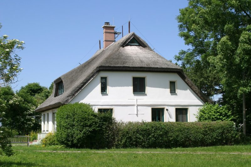 Thatched Roof Ideas