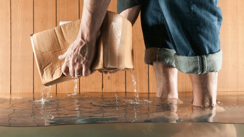 Basement Flooding Cleanup